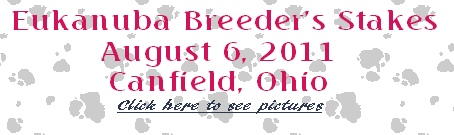 Eukanuba Breeder's Stakes